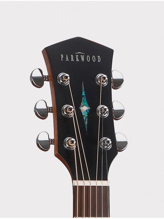 Акустическая гитара Parkwood S21-GT с чехлом