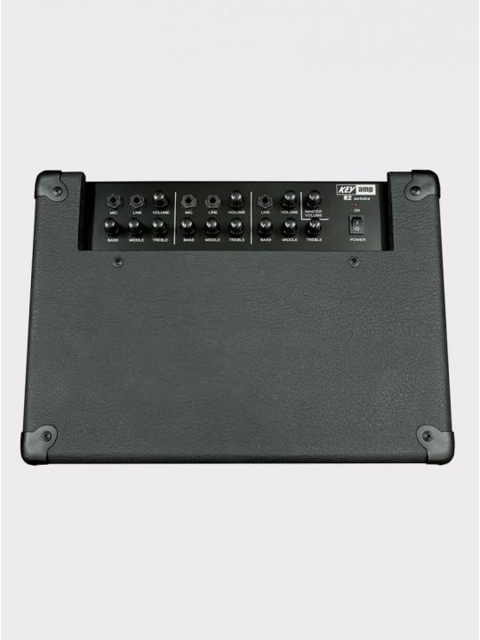 Комбо для клавишных Yerasov Keyamp R3