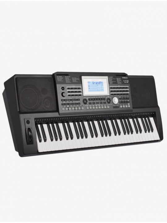 Синтезатор Medeli A810